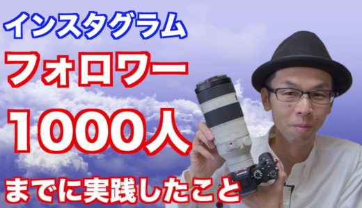【インスタグラム】フォロワー1000人までにやったこと/まとめ【野鳥写真】